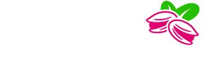 Shadiz Dried Fruit Trading Company